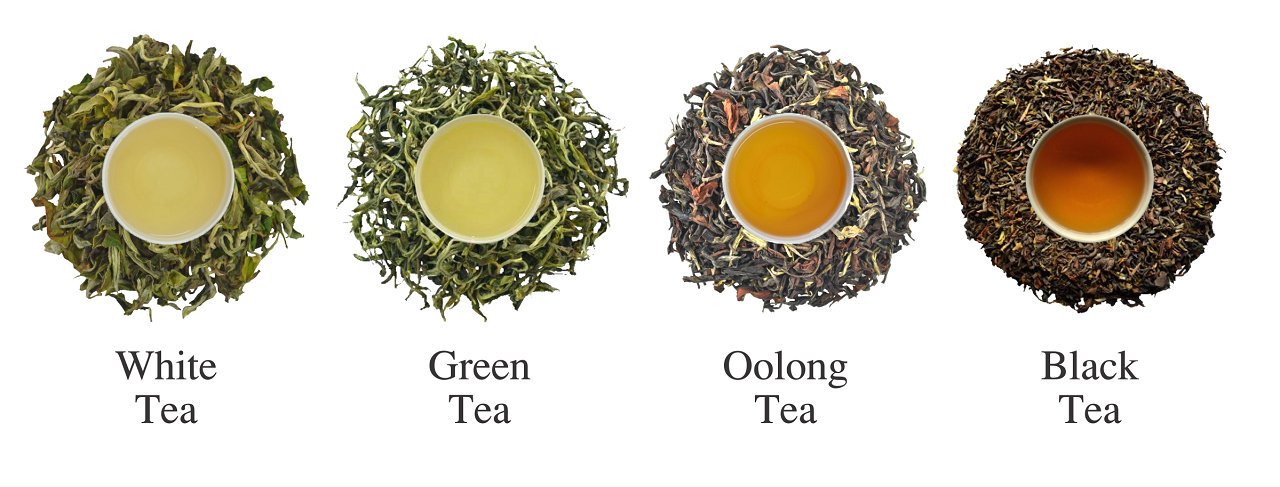 types of wild tea Wild tea qi artisan handpicked and processed all of our teas are expertly and only handpicked and processed we never buy mass produced machine cut supporting sustainable, organic tea farms and plantations is a cornerstone of wild tea qi's mission we never buy tea from mono-culture, mass.